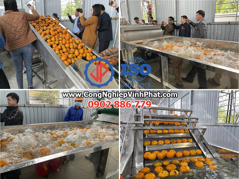 Lắp đặt dây chuyền máy rửa trái cây, máy rửa cam sành năng suất 30 tấn/ngày