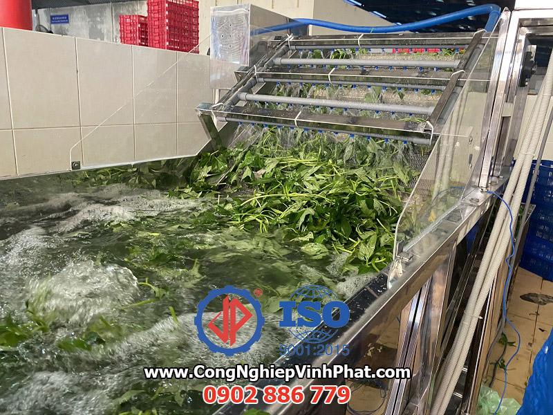 Băng tải phun nước làm sạch và vớt rau của máy rửa rau công nghiệp Vĩnh Phát