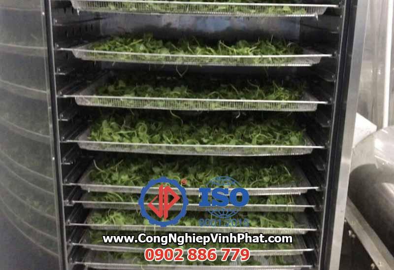 Máy sấy lạnh rau má giúp thành phẩm giữ nguyên màu sắc và chất dinh dưỡng