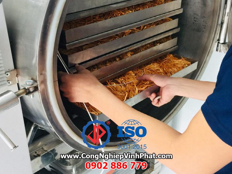 Công nghệ máy sấy thăng hoa đông trùng hạ thảo của Vĩnh Phát cung cấp chất lượng cao